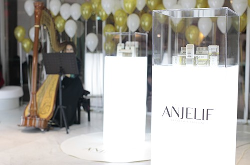 evento-lancamento-anjelif-1