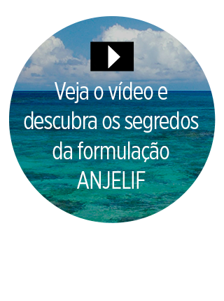 anjelif-video-como-nasceu-a-marca